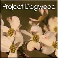 Dogwood-project