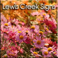 Lewis-Creek-Signs-project